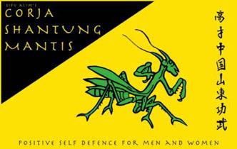 northern praying mantis kung fu pdf